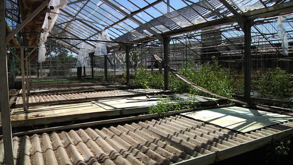 Central Wisconsin: The Greenhouse Project
