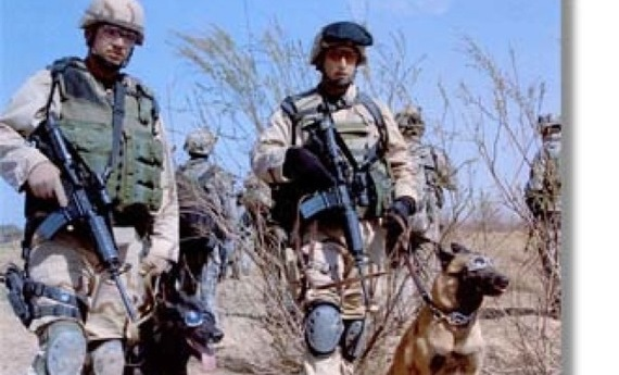 Provide Military Working Dogs with cool vests and other protective equipment .