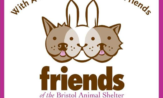 Bristol Animal Shelter