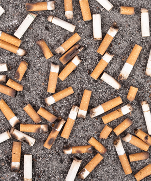 Cigarette butts littering the ground