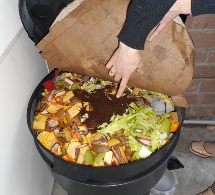 Food scraps in a compost bin