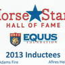 Afires Heir and Adams Fire were honored in Florida at a spectacular USEF Horse Stars Hall of Fame ceremony - both individuals are of the highest quality and highest accomplishments in the Arabian world - both bred by Shea Stables!
