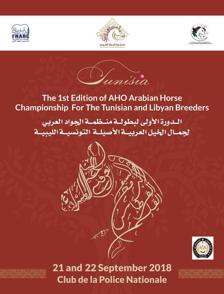 AHO ARABIAN HORSE CHAMPIONSHIP - TUNISIA & LIBYA