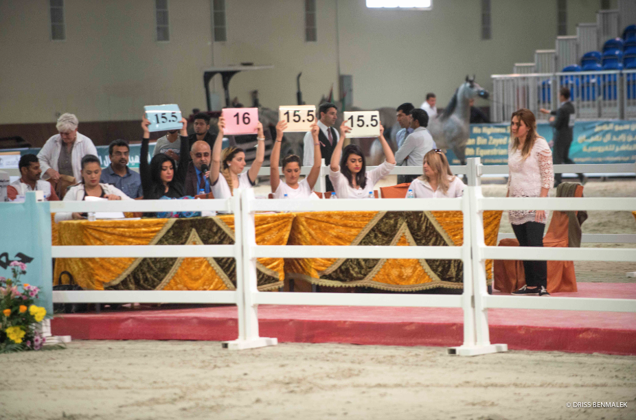 AHO Breeders' Championship Arab Countries, Boutheib, UAE 2016