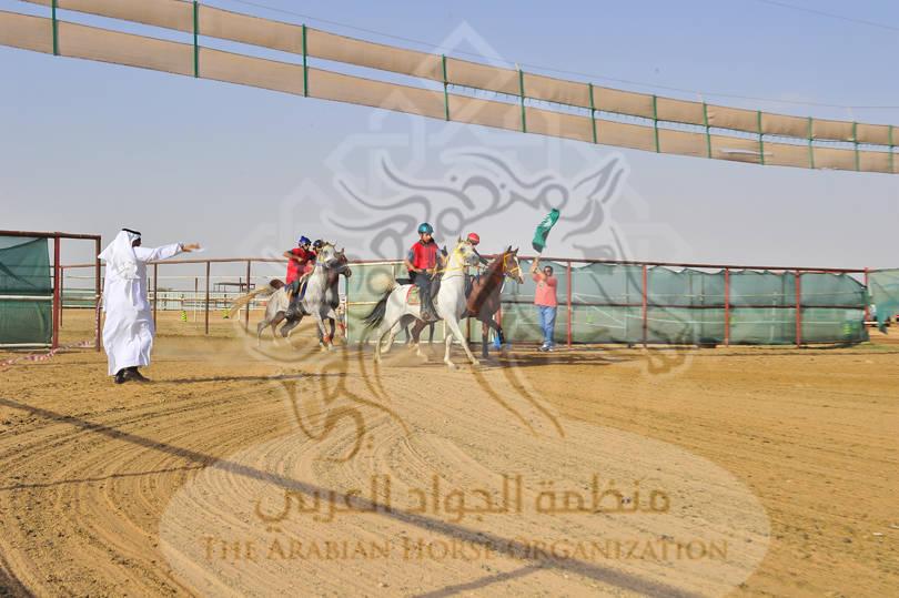 Racing Taif, KSA, 2012