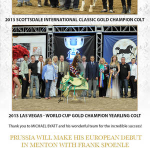 Prussia MI wins the Arabian Breeders World Cup