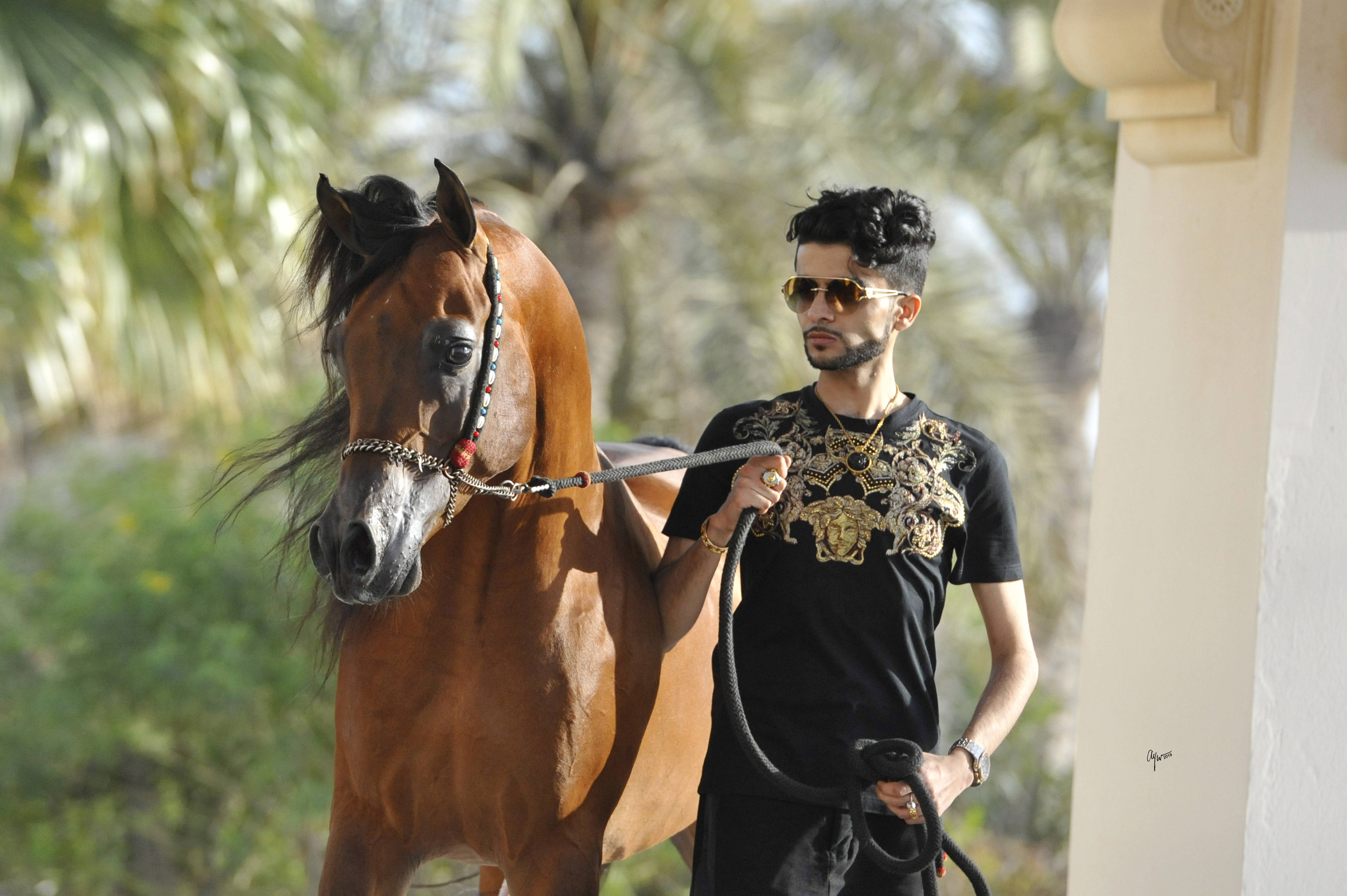 Nader Al Rashediah