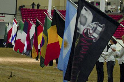 2008 Arabian Breeders World Cup Gallery