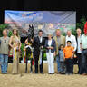 AHBA Futurity Yearling Colts/Geldings Silver Champion - Imperious NA