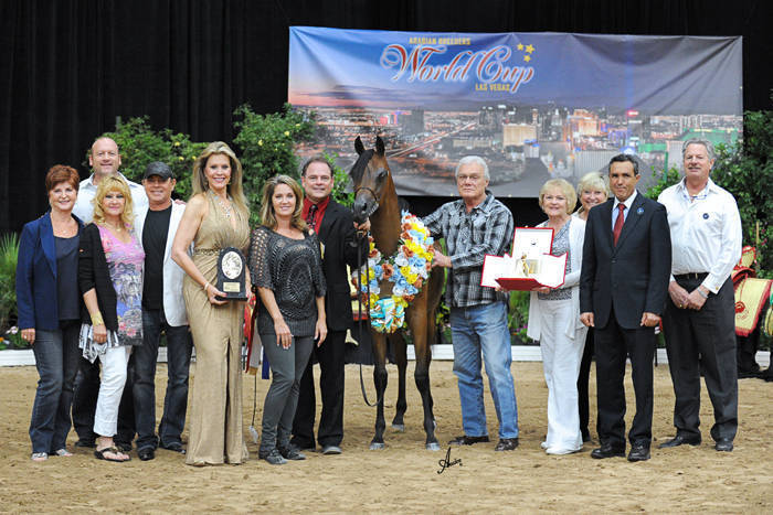 ABWC Yearling Filly Supreme Bronze Champion - Faraah AC