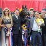 2013 ABWC Champions