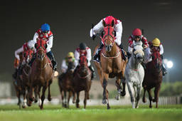 March Racing in Abu Dhabi Featuring Five Stakes Races