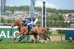 Racing: The President of the UAE Cup at Deauville
