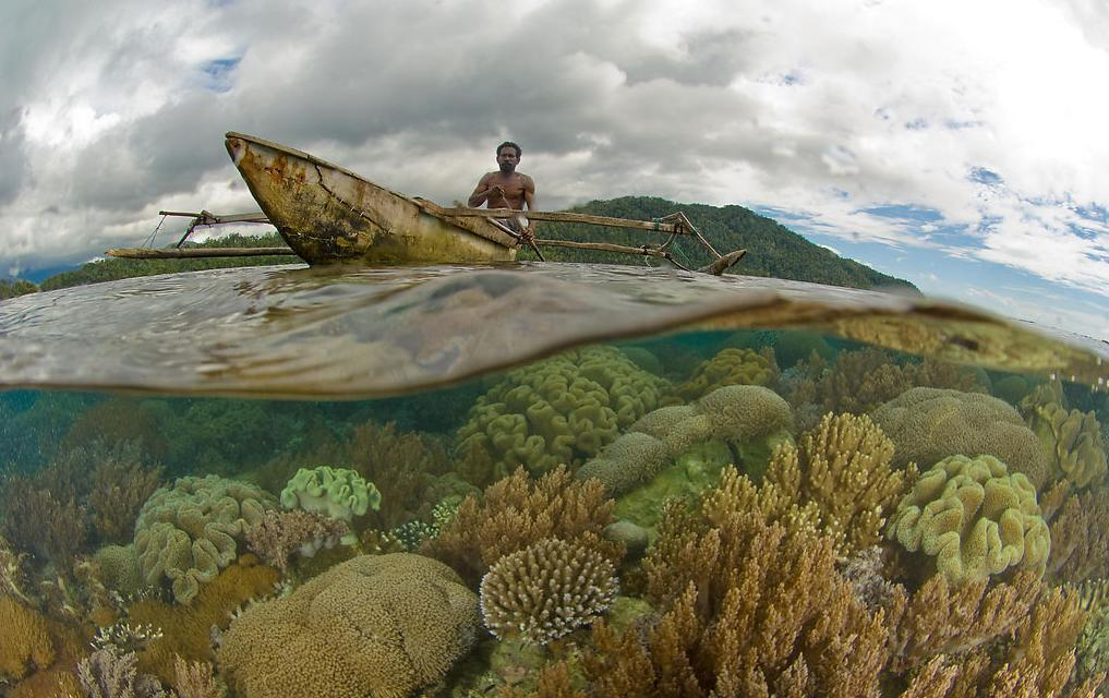 Raja ampat reef and canoe