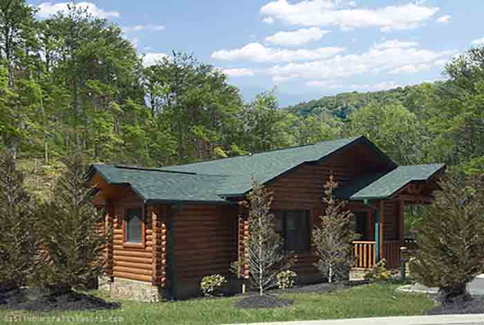 Gatlinburg cabin absolute adventure 1 bedroom sleeps for Gatlinburg dollywood cabins