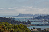 Mount Tam view