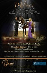 Da Vinci FM- 2013 Scottsdale International Silver Champion Stallion