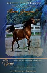 Congratulations to Stillwater Arabians!