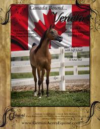 Good Luck Veneta CS @ Canadian Nationals