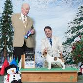 WB/BOS Foxfield's Paperback Writer with judge Dr Robert D Smith @ the Hoosier Kennel Club show February 6, 2015