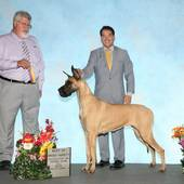 BOB GCH Ch Journey's Jewel with judge Steven Gladstone @ the Southeastern Iowa Kennel Club show July 12, 2015