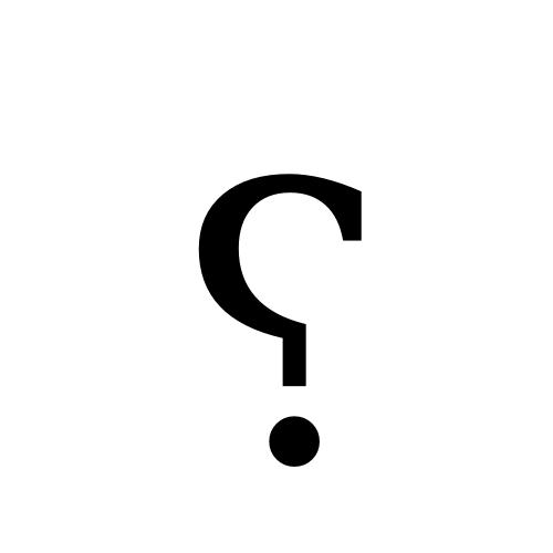 DejaVu Serif, Book - ⸮
