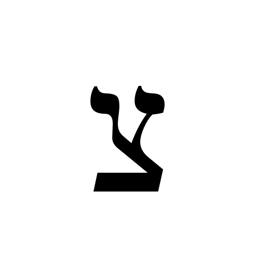 צ | hebrew letter tsadi | times new roman, regular @ graphemica