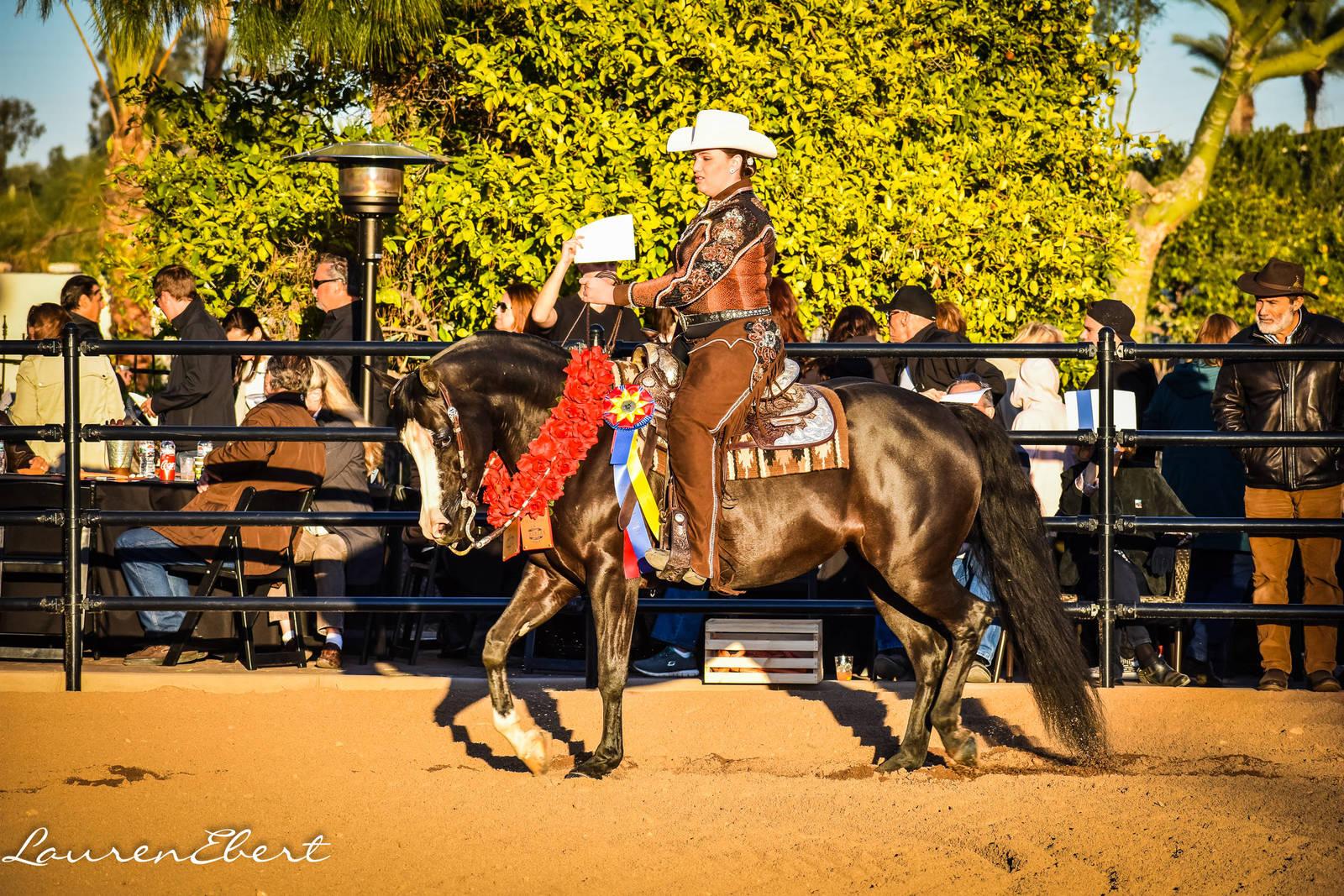 2018 GRK Scottsdale Show Open House