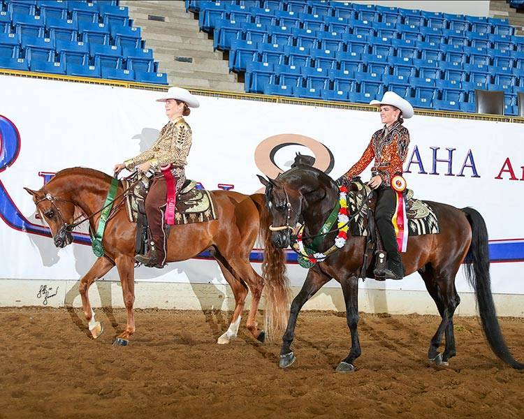 2018 Region 8 Reserve Champion Western Pleasure Jr Horse