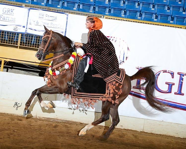 2018 Region 8 Reserve Champion HA Mounted Native Costume