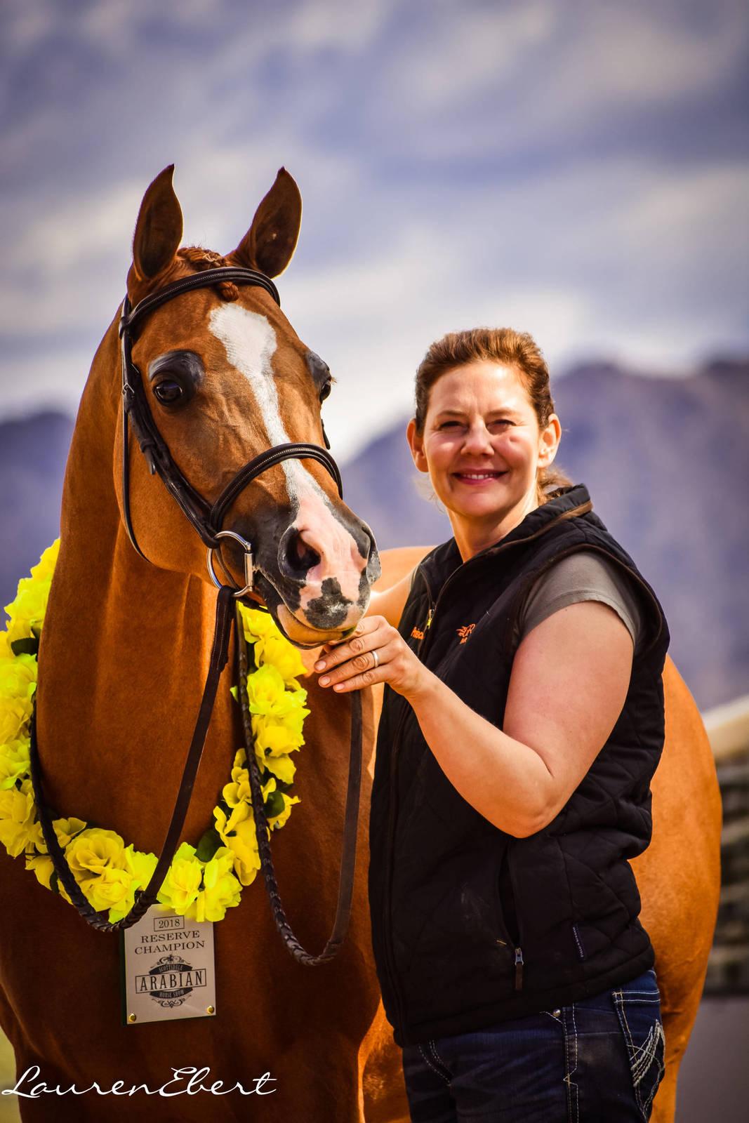 2018 Scottsdale Reserve Champion - Lady Justify GRK