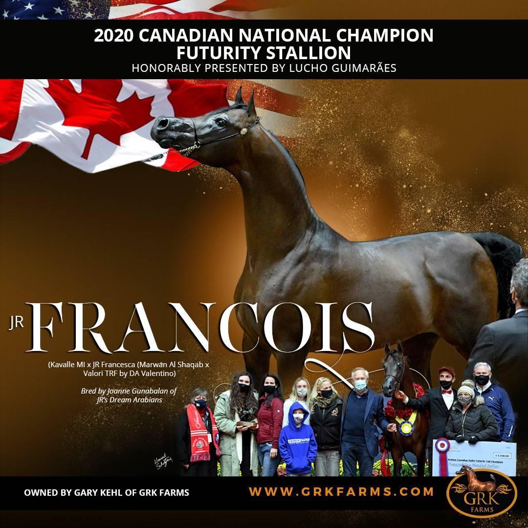 Canadian National Champion Futurity Colt ~ JR Francois
