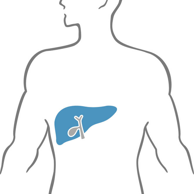 Liver Disease in People Living with HIV