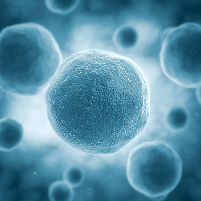 How Disabled HIV Cells are Used to Create Cancer Treatment