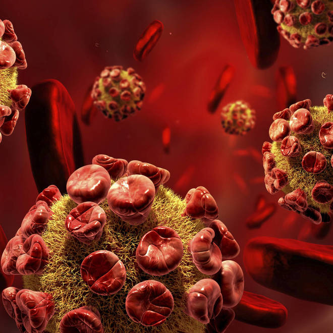 "STUDY: HIV Uses ""Tiny Molecular Claws"" To Penetrate Healthy Cells"