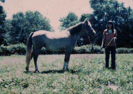 Daughter, Audrey photographed with 1973 mare SHASTAH #96858 sired by Randgor and out of the mare Sfair.