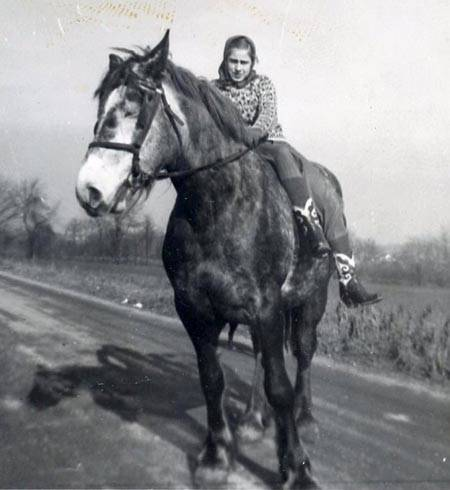 "Gloria ""Chip"" 1945 on Draft mare on the farm"