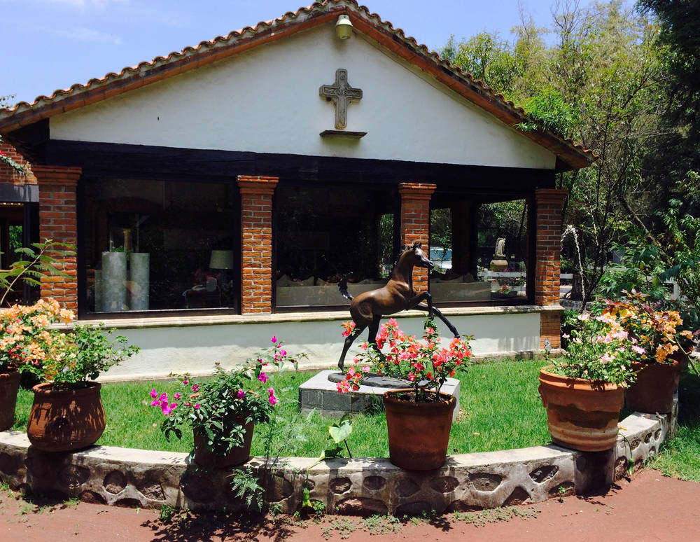 Felix Cantu - Rancho Las Potrancas