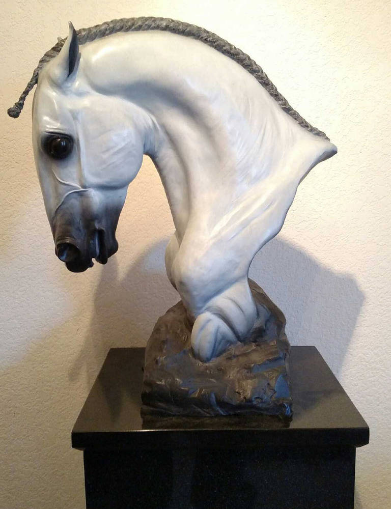 1/3 Life-Size Bronze Portrait of Lusitano Stallion  --   