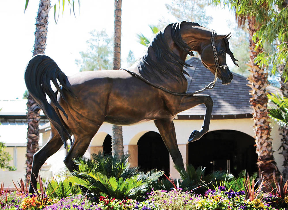 Stallion of the wind Life-size bronze. --   David Boggs Midwest Training Centre, Scottsdale, Arizona