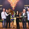 2018 Scottsdale Arabian Horse Show