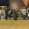 2018 Arabian National Breeder Finals