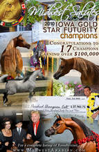 2010 Iowa Gold Star Futurity