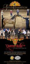 *Queen Ayda – A Spectacular American Debut