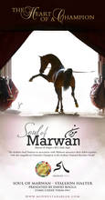 It's What's Inside - Soul of Marwan AS