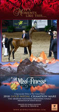 Arabian National Breeders Finals - Gold Champion Medal Mare * SM Miss Finesse