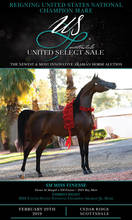 Reigning United States National Champion Mare