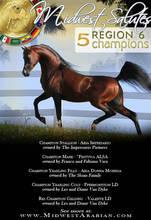2012 Region 6 Championships