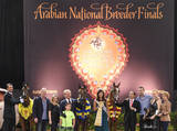 2015 Arabian National Breeder Finals