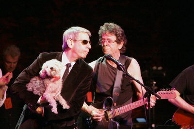 Belzer, Reed, Dog